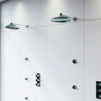 Swadling Absolute Deluge Head on Shower Arm